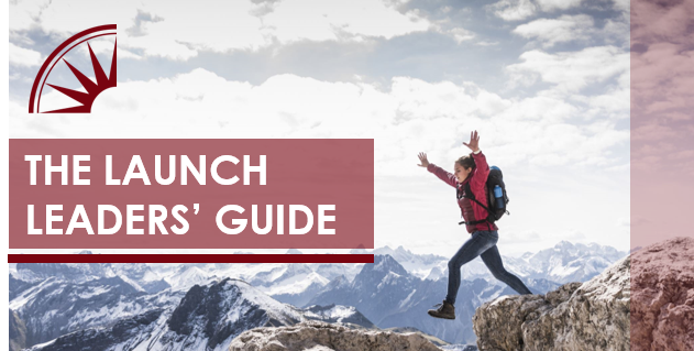 Pharmaceutical Marketing – The Guide to Launch Excellence Success